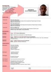 Fichier PDF cv ismaila ba