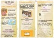 physionoma brochure 2011