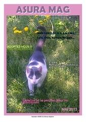 Fichier PDF asuramag mai2013