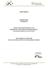 etude crehpsy rapport final galaxie decembre 2012