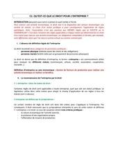 Fichier PDF c1 1