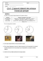 travail groupe c5d appareil digestif des animaux