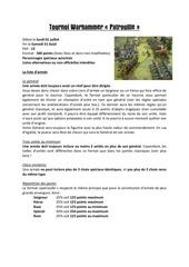 Fichier PDF tournoi warhammer