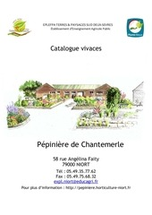 catalogue plantes vivaces