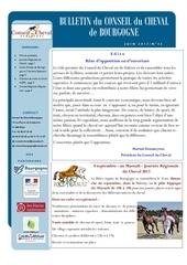 bulletin ccb2 juin 2013 pub