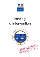 gigm briefing