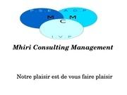 Fichier PDF mcm