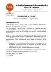 Fichier PDF communique de presse upr nantes juillet 2013