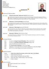Fichier PDF cv nicolas dujardin light 1