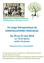 stage de constellations familiales a djerba 2013 1