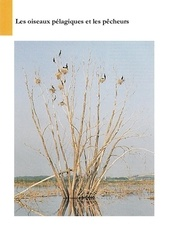 Fichier PDF les oiseaux pelagiques et les pecheurs