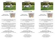 flyer esperance tdisc