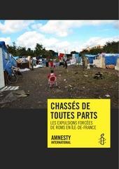 rapport ai expulsions forcees de roms en idf