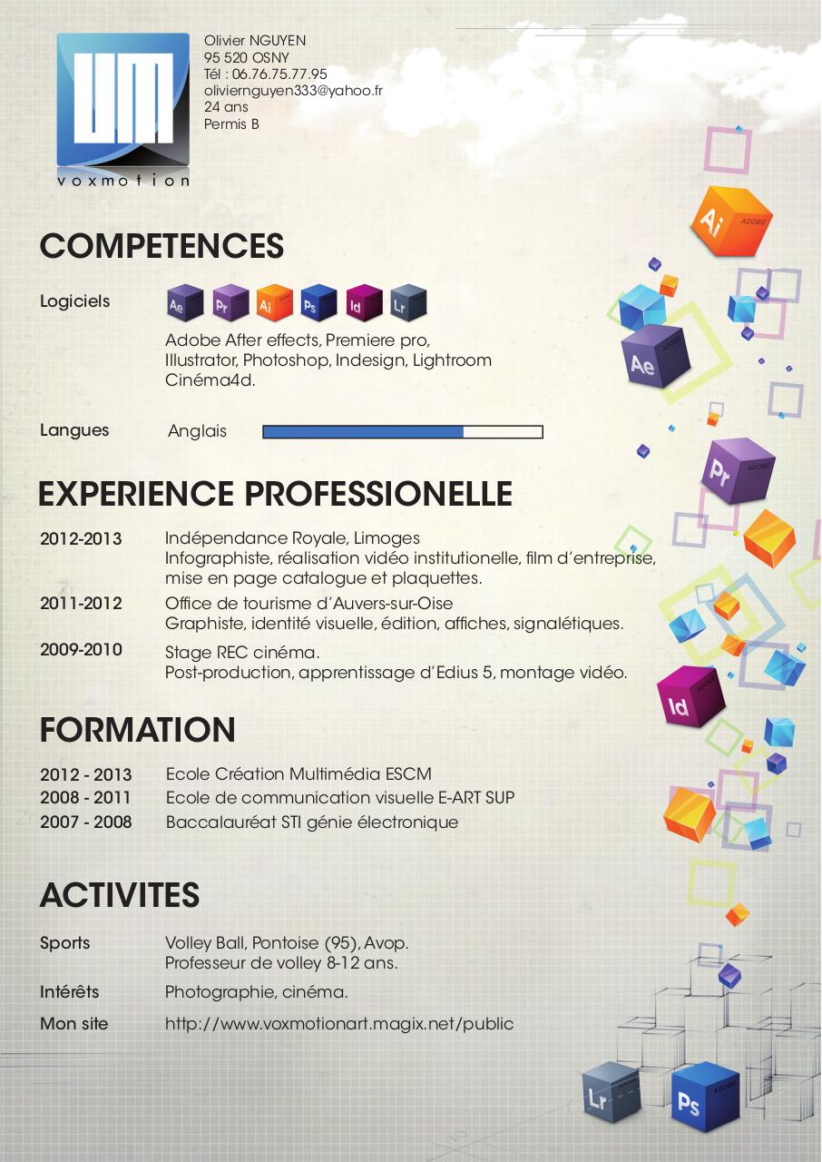 cv 2013  cv 2013 pdf