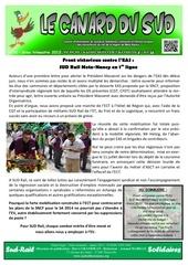 canard du sud 3eme trimestre 2013 5