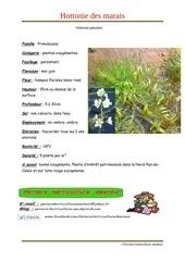Fichier PDF hottonia palustris