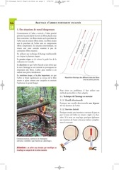 Fichier PDF 59 abattage d arbres fortement inclines