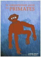 memoire primates