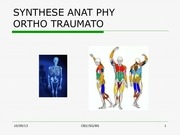 ortho anat physio