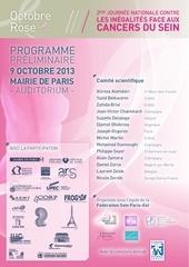 oct rose 2013 programme v10 pap