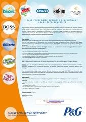 Fichier PDF p g france cdi representant des ventes
