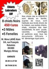 chiots lof2