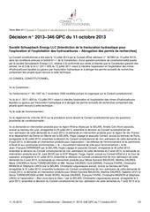 conseil constitutionnel 138283