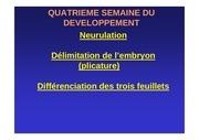 Fichier PDF 4eme semaine 2010