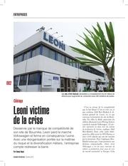 pdf article leoni