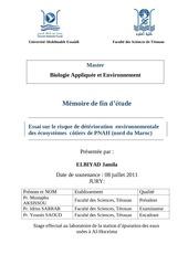 Fichier PDF elbiyad pfe1