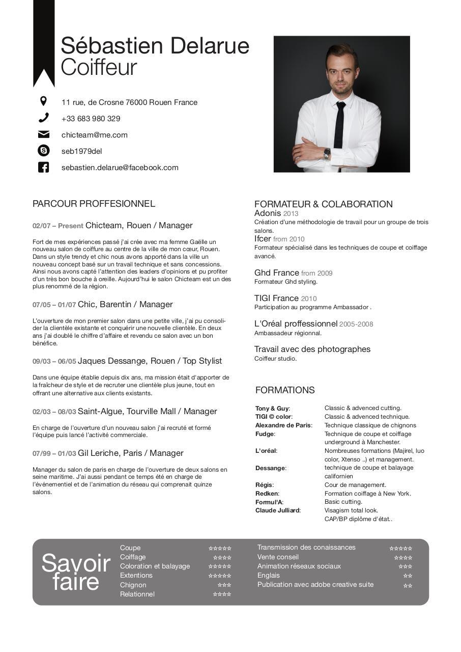 cv sebastien delarue - cv englais fran u00e7ais pdf