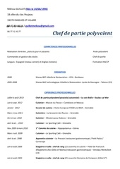 Fichier PDF cv 2013 pdf 1