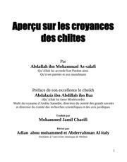 apercu des croyances chiites