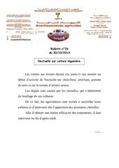 Fichier PDF bulletin noctuelles sur culture legumiere