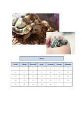 Fichier PDF calendrier pbdn c