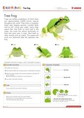 tree frog e a4