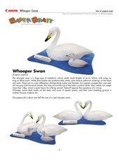 whooperswan e a4