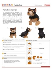 yorkshire terrier e a4