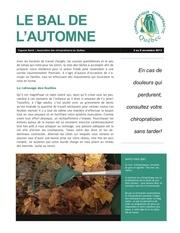 113 fr v les corvees d automne 3 au 9 novembre 2013