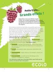 tract petits fruits 2013