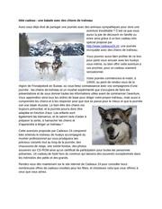 Fichier PDF idee cadeau une balade avec des chiens de traeneau