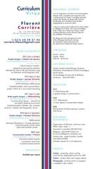 Fichier PDF cv 2013 en