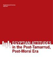 egypt july 2013 final