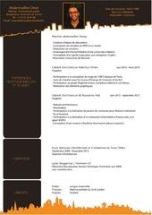 Fichier PDF cv book omar