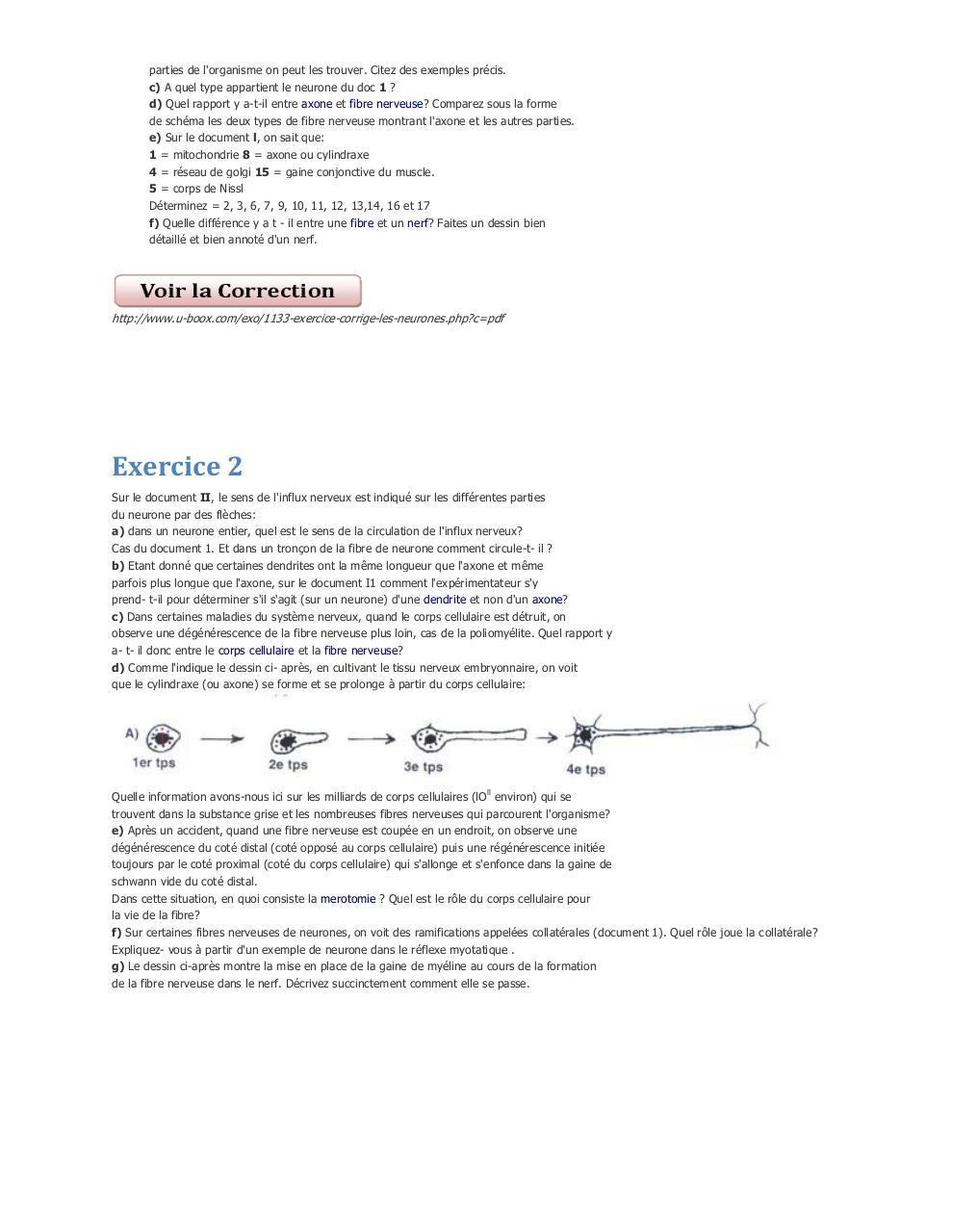 Exercices de SVT Le Fonctionnement des neurones par ...