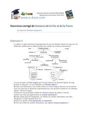 Fichier PDF exercices de svt les bases de l immunocompetence