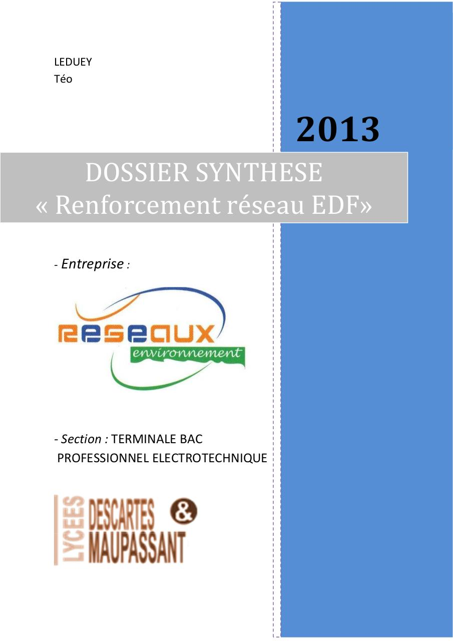 Aperçu du document LEDUEY_DOSSIER_SYNTHESE_2013.pdf - page 1/16
