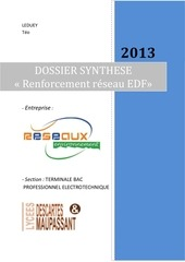 Fichier PDF leduey dossier synthese 2013