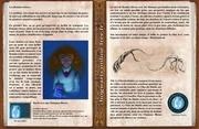 livre pour apprendre le sort flammes bleues