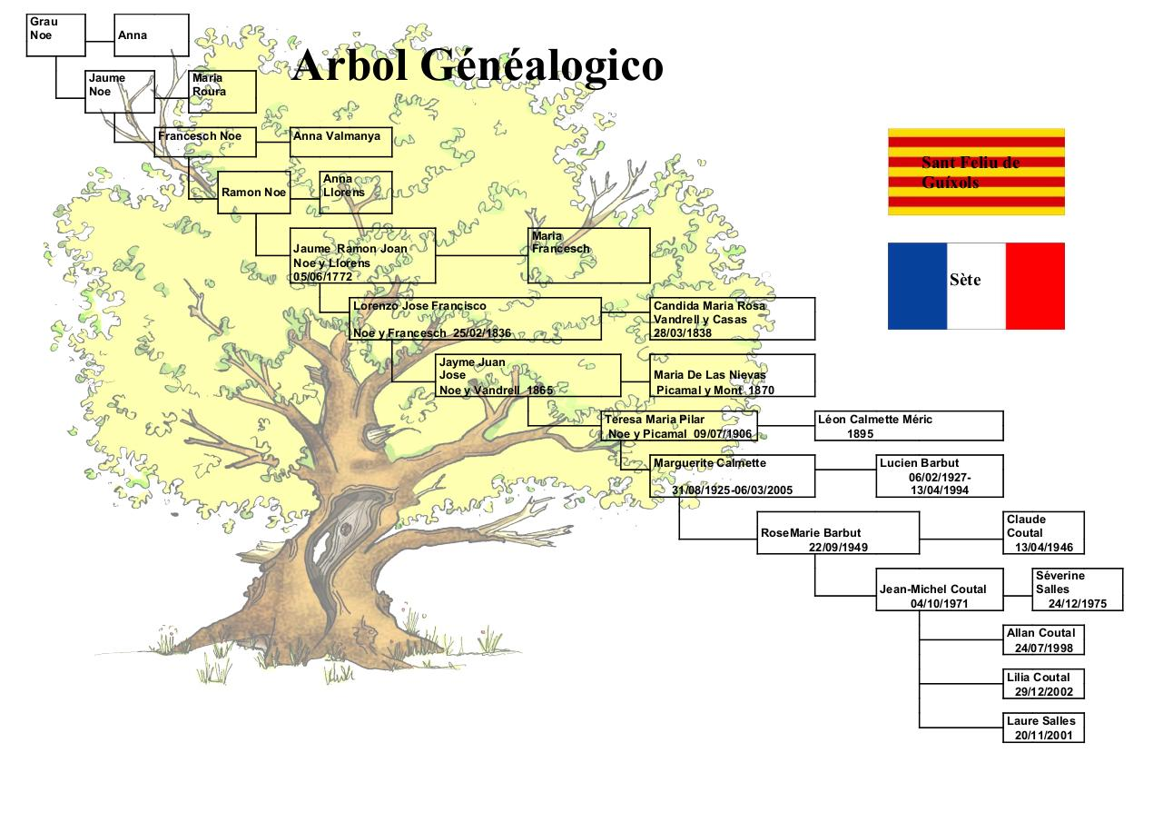 Aperçu du document Arbre Catalan.pdf - page 1/1